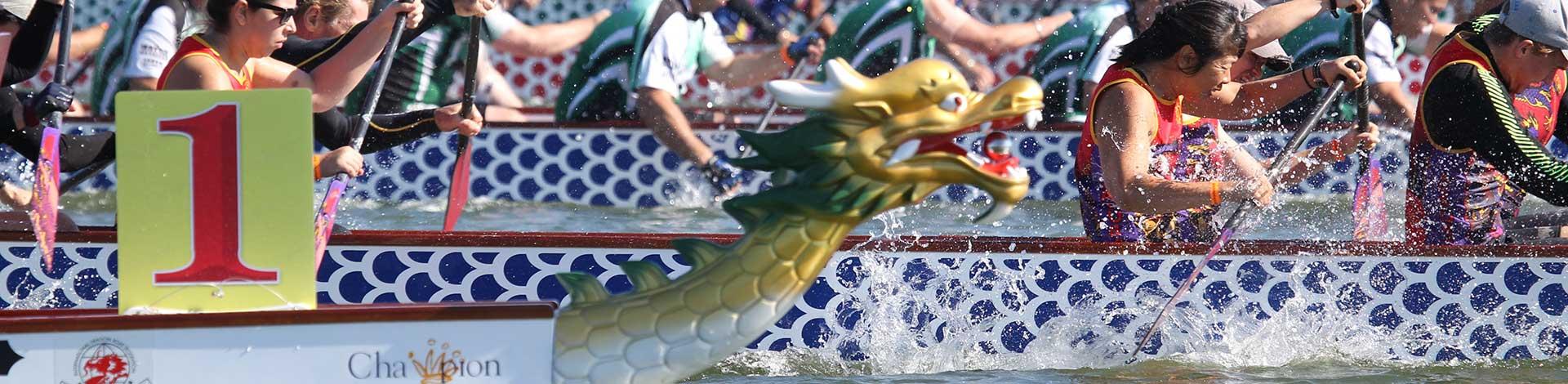 Arafura Dragons